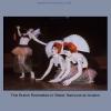 20040229-02-23-Falgerho--Butoh-Rockettes--Celeste-Hastings-Sisters-Samurai-ccs